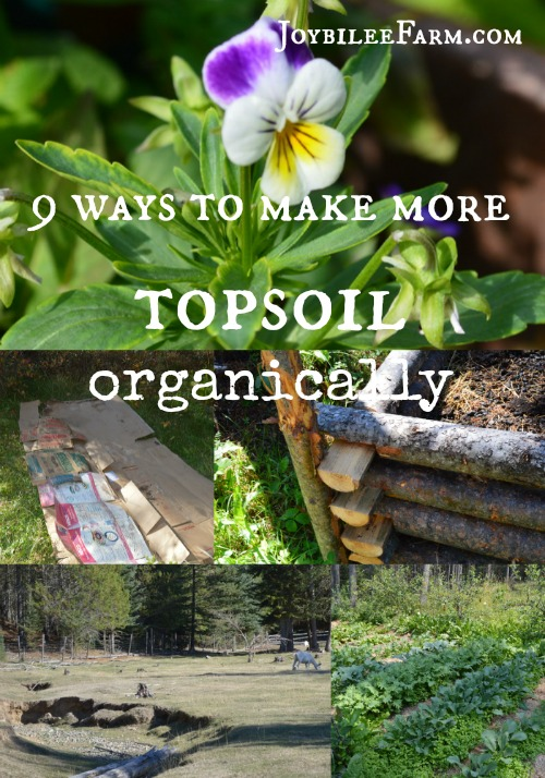 9 ways to make more topsoil organically -- Joybilee Farm