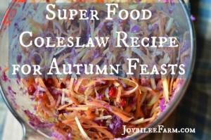 Super Food Coleslaw Recipe for Autumn Feasts