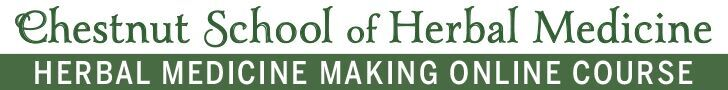 Herbal Medicine Making Course