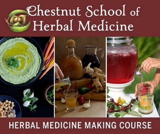Essential Medicine Making Course