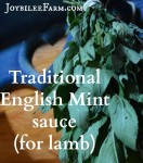 Traditional English Mint sauce for lamb