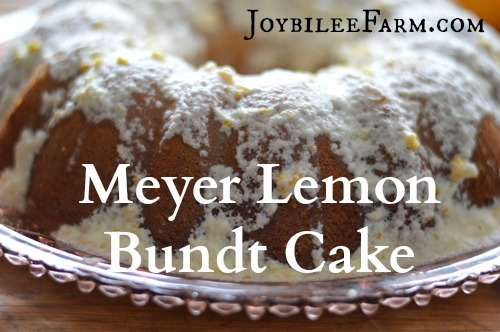 "This meyer lemon bundt cake uses just two of these fragrant and juicy fruits. If you only have access to regular lemons, you'll need 3 to equal the amount of zest and juice in this recipe that two meyer lemons have. This is lovely for a light, refreshing tea cake. Plate it with a pretty vintage plate from the thrift store and share it with a neighbor. Tell them you don't need the plate back, and they can ""pay it forward"". Start a happy neighborhood trend and build your community up. Here's the recipe. I hope you enjoy it."