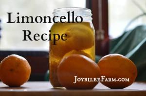 Limoncello recipe using Meyer Lemons