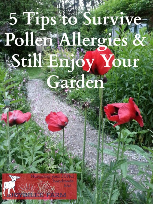 Spending time in the garden can be a rewarding, fun, and productive pastime. It can also sometimes be a real hassle when you suffer from pollen allergies. If your time in the dirt seems to get spoiled by sneezing, watery eyes, and stuffy sinuses, here are five tips the pollen-sensitive gardener can use to fight back.