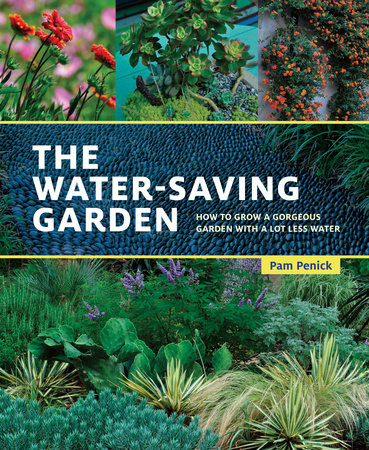Water saving Gardening Book Image