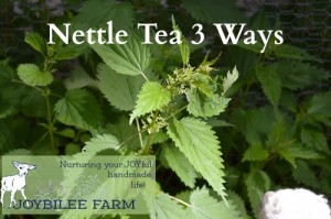 Nettle Tea Three Ways