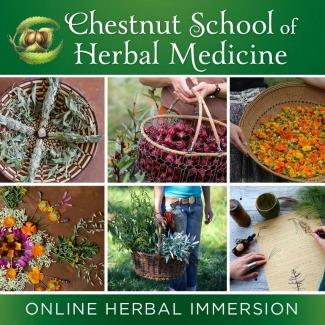 Learn Herbal Medicine