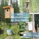 Make Bluebird Houses For Your Garden