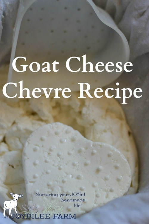 This is a soft goat cheese that is cubed in salads or spread on crackers. It's served in fancy restaurants as an appetizer. But if you make your own it will taste a thousand times better than any that you find in restaurants or grocery stores.