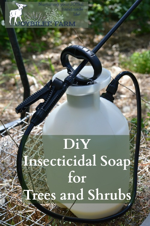 how to get rid of tent caterpillars with dawn soap