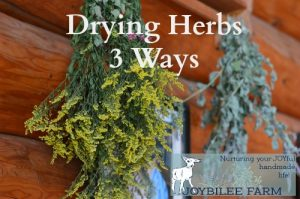 Drying Herbs 3 Ways