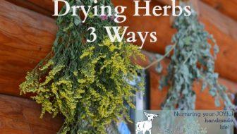 Drying Herbs 3 Ways