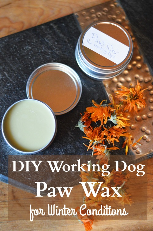 paw-wax-for-working-dogs-vertical