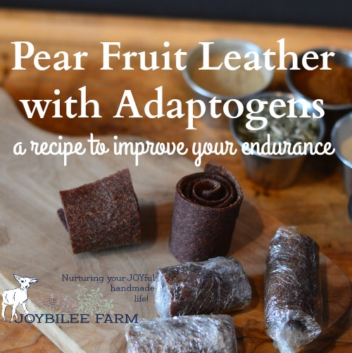 pear-fruit-leather-feature