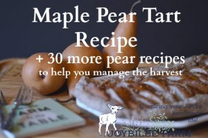Maple Pear Tart Recipe and 30 More Pear Recipes to Help You Manage the Harvest