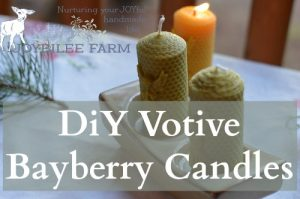 DiY Bayberry Candle from Foraged Berries