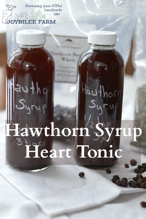 Hawthorn is a superior heart tonic and restorer, as well as an emotional support for broken hearts. Make this easy Hawthorn Syrup as a heart tonic and restorative for tired hearts.