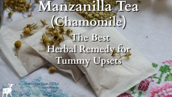 Manzanilla Tea — The Best Herbal Remedy for Tummy Upsets