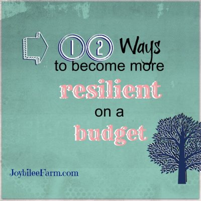 A Dozen Ways to be more resilient on a budget