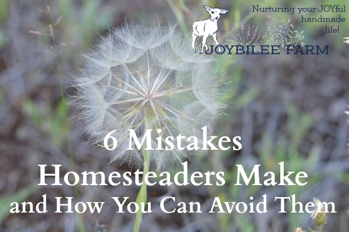Having a homestead, raising your own food, ensuring that your animals are fed wholesome, GMO free feed which then will nourish you, is an extremely satisfying lifestyle. With some foresight you can avoid many of the mistakes that cripple a homestead venture and cause unhappiness, sending the defeated homesteader back to the city, broke and wounded. The following 6 mistakes can be avoided with a little planning to ensure that your homestead is a blessing to you and your family for many years. Don't make these mistakes
