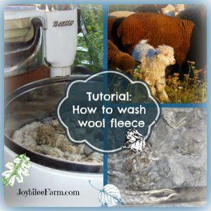 Wool Fleece Washing Basics