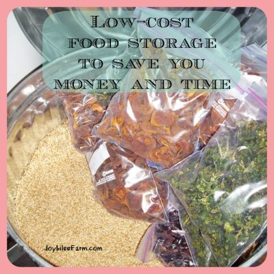 Low-cost food storage to save you money and time