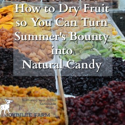 How to Dry Fruit so You Can Turn Summer's Bounty into Natural Candy