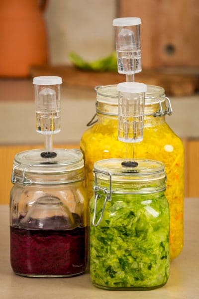 Traditional food preservation methods included lacto-fermented vegetables.Fermentation preserves vegetables by converting water, starches, sugars, and proteins, with micro-organisms, preventing spoilage and increasing the nutritive properties.