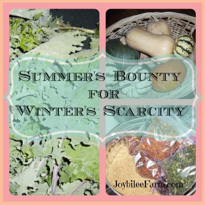Food preservation –  summer's bounty for winter's scarcity
