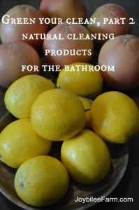 Green your clean, part 2, natural cleaning products for the bathroom