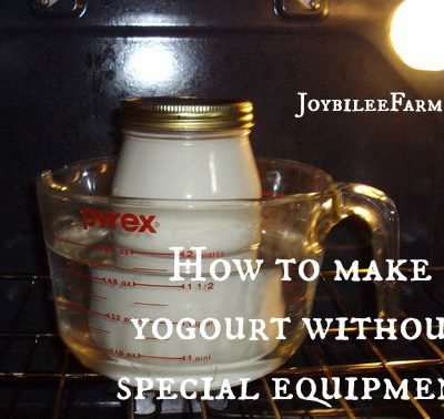 Home Dairy:  Easy yogourt with just 2 ingredients