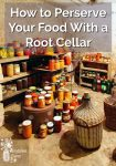A root cellar with lots of home canned goods