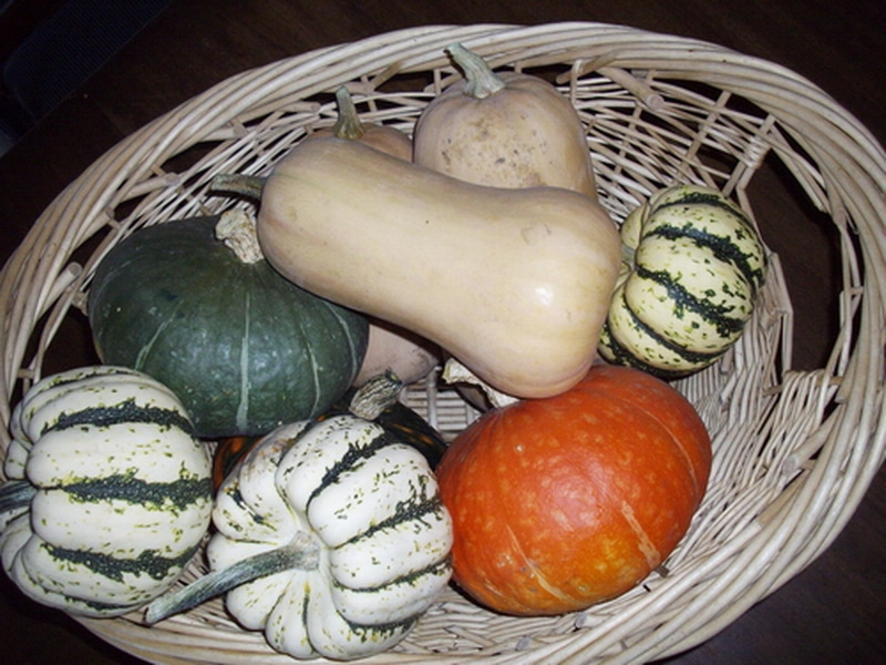 a wicker basket of mixed squash types including butternut and sweet dumpling