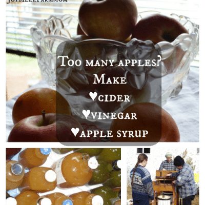 Too many apples?  Make cider, vinegar and apple syrup.