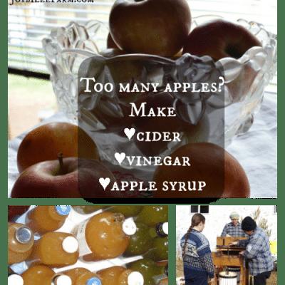 Too many apples?  Make cider, vinegar and apple syrup.