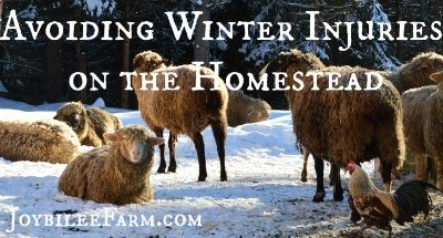 Avoiding Winter Injuries on the Homestead — an ounce of prevention