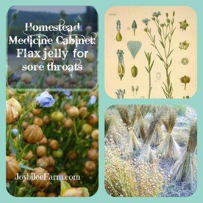 Homestead Medicine Cabinet: Flax jelly for sore throats