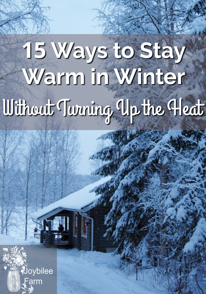 Snowy cabin and trees with the text 15 Ways to Stay Warm in Winter Without Turning Up the Heat