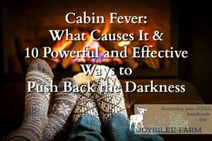 Cabin fever, seasonal affective disorder, mild depression, whatever you call it, it is a malady that affects rural people and northerners in the middle of the winter, in the dreariness of winter weather. But once you understand what it is you will have in your hands the way to overcome cabin fever.