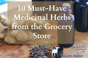 Must have medicinal herbs you can find at the grocery store