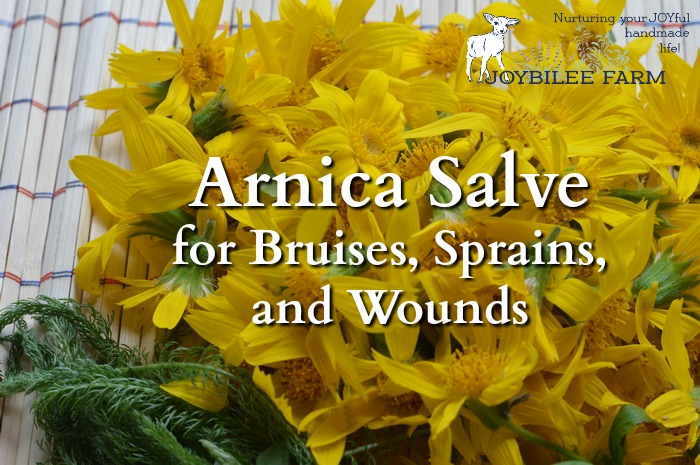 Arnica salve soothes bruises, sprains, and strains. It is a must for your first aid kit, especially if you are active outdoors.