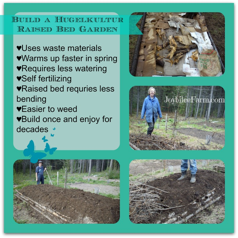 collage of building a hugelkulture bed, cardboard and outline, stamping down wood-waste, adding compost and manure, and adding finished soil