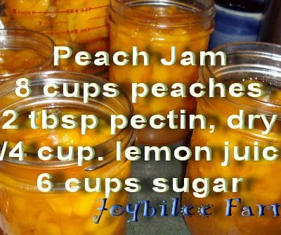 How to use bulk pectin to make jam:  Peach jam