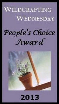 Last Chance to vote on the People's Choice Awards