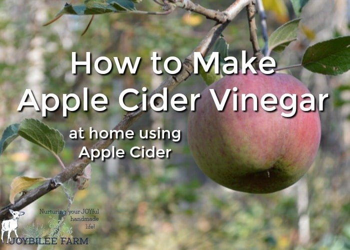 Make apple cider vinegar at home using apple cider. Use organic apples if possible, as you are going to use the apple peels too.
