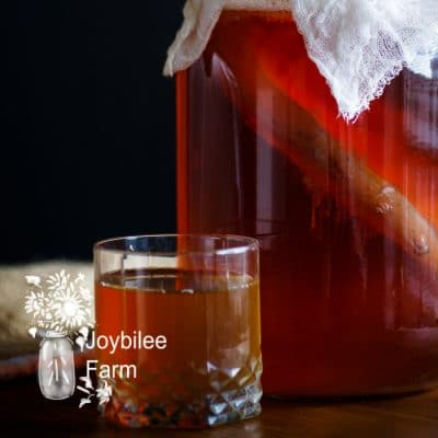 Get These 18 Kombucha Tea Benefits for Pennies a Dose