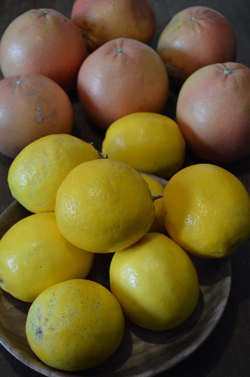 Lemons and grapefruit used to make DIY Lemon Vinegar Cleaner