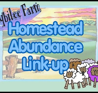 Homestead Abundance:  It looks like work