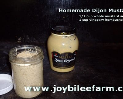 Making Dijon Mustard from scratch