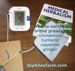 Manage Blood Pressure Naturally